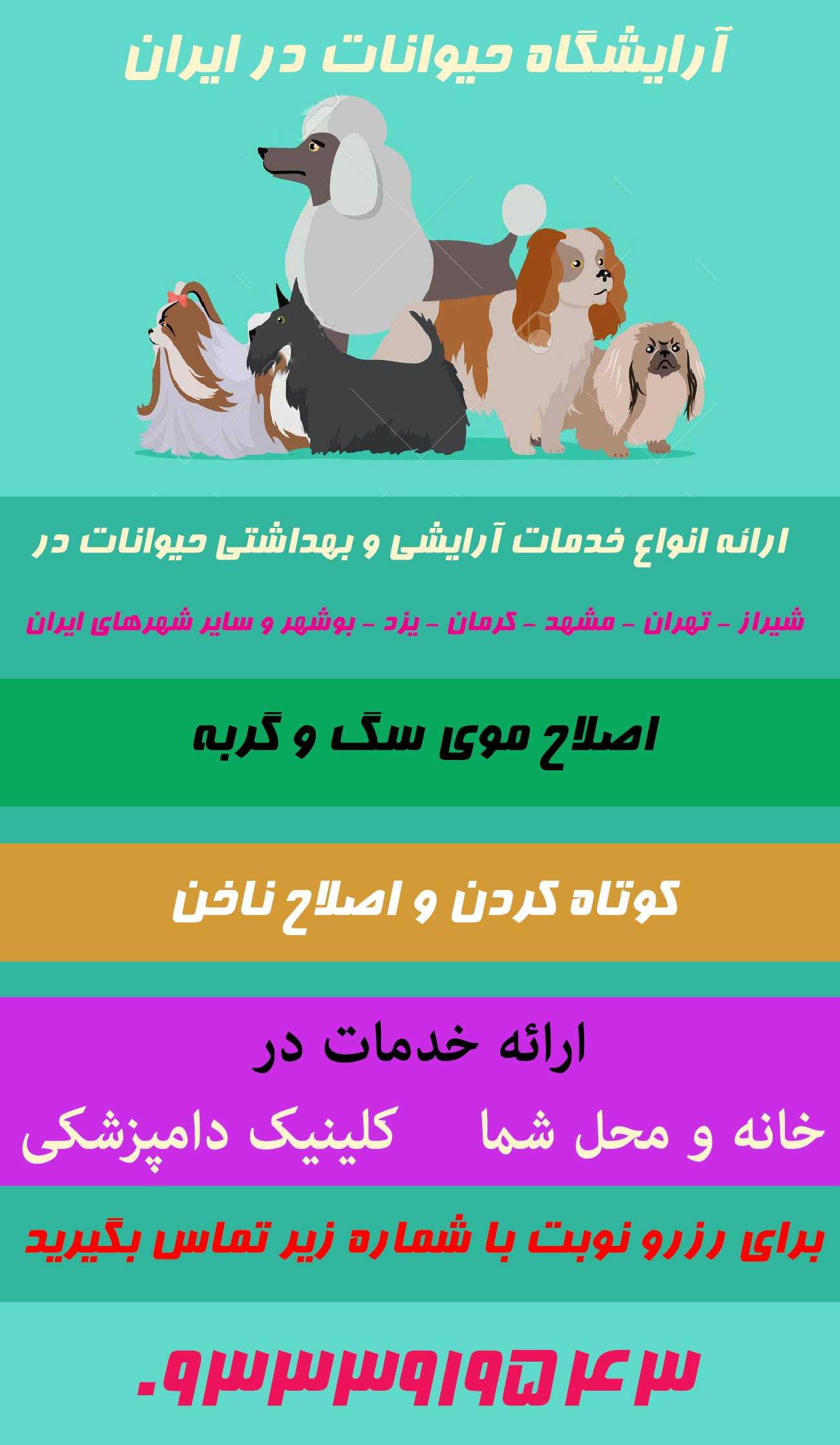 آرایشگاه حیوانات خانگی و سگ و گربه در شیراز تهران مشهد کرمان یزد بوشهر اصفهان و سایر شهر های ایران