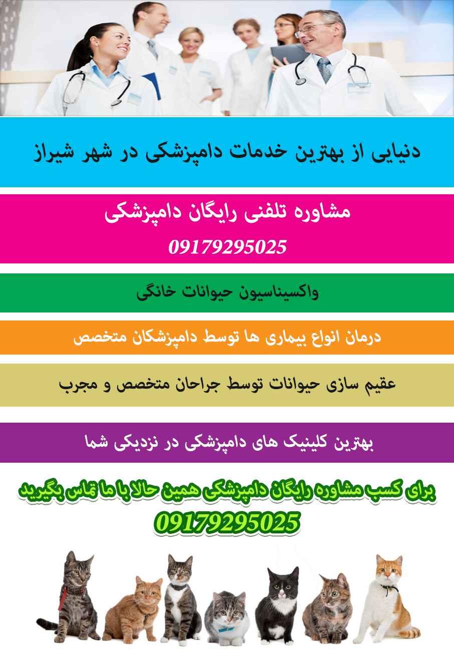 خدمات دامپزشکی در تهران کرمان یزد بوشهر اصفهان مشهد