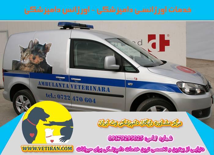 اورژانس دامپزشکی شیراز، کرمان، یزد، مشهد، تهران، اصفهان، بوشهر و سایر شهرها