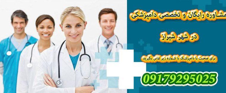 دامپزشکی شیراز و معرفی کلینیک دانشکده دامپزشکی شیراز