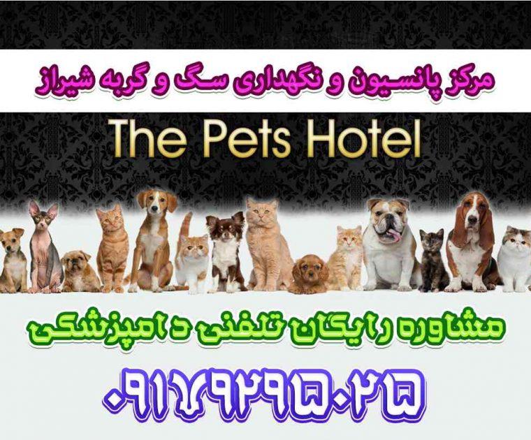 پانسیون سگ و گربه در شیراز