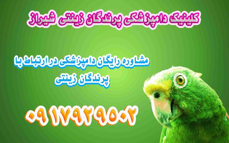 آدرس کلینیک دامپزشکی پرندگان در شیراز