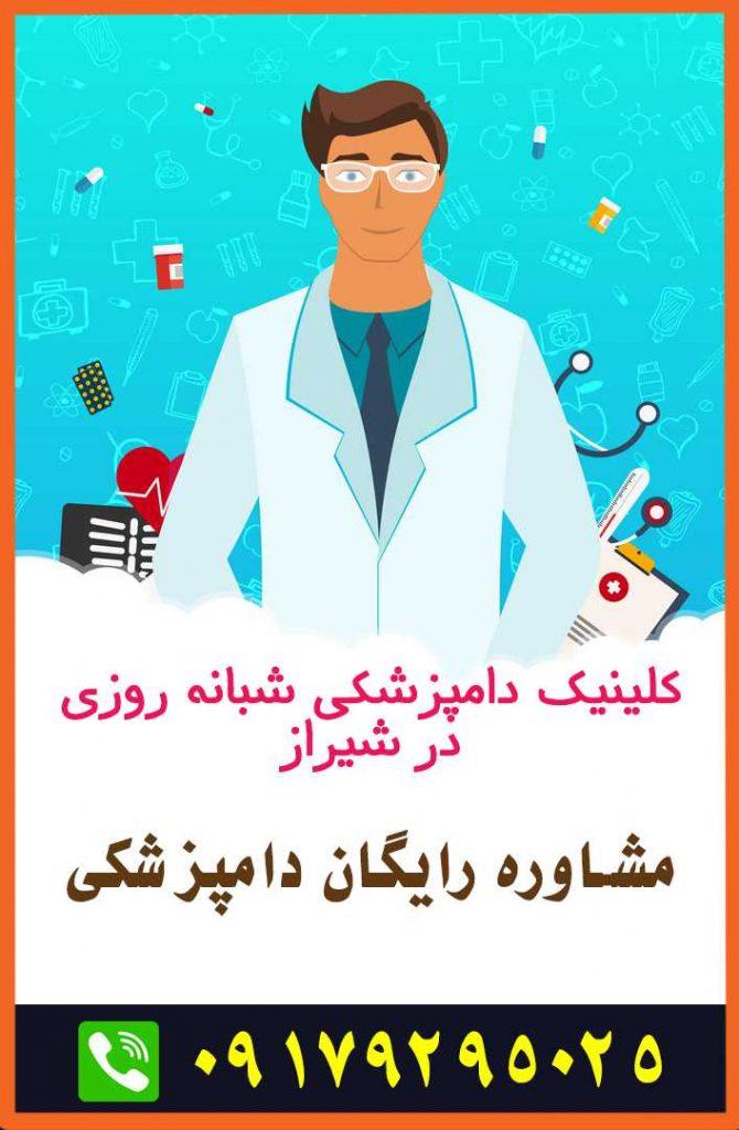 آدرس کلینیک و بیمارستان دامپزشکی شبانه روزی شیراز