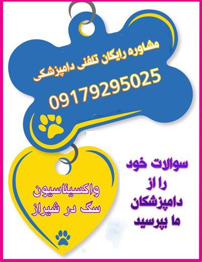 واکسیناسیون سگ در کلینیک دامپزشکی شیراز