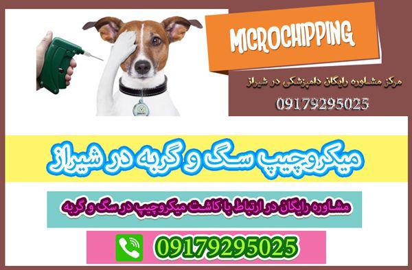 میکروچیپ سگ و گربه در شیراز