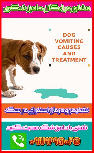 دلیل استفراغ در سگ