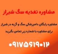 دکتر-تغذیه-سگ-در-شیراز