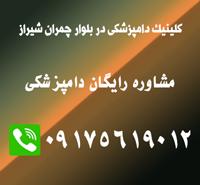 دکتر حیوانات در چمران شیراز