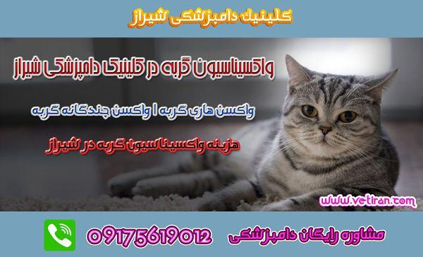واکسن هاری گربه در شیراز